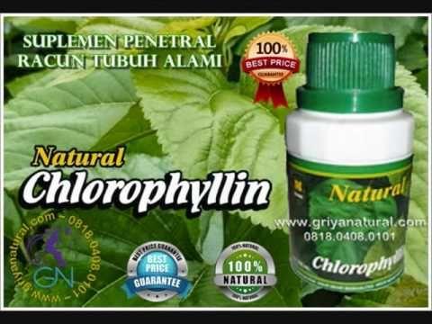 Obat Detox Minuman Detoksifikasi Pembersih Alami Darah Kotor dan Penawar...