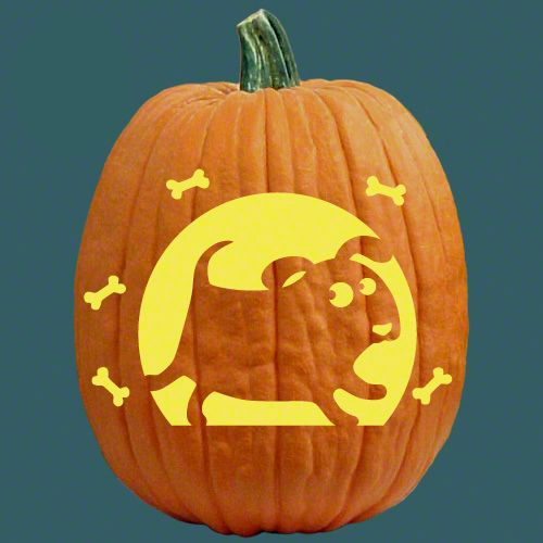 Best back to nature pumpkin carving patterns images on