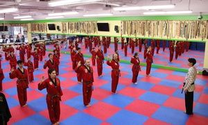 Groupon - One Month of TaeKwonDo Classes for One or Two at Sung Lee Taekwondo (Up to 90% Off) in Ellerslie Industrial. Groupon deal price: C$30