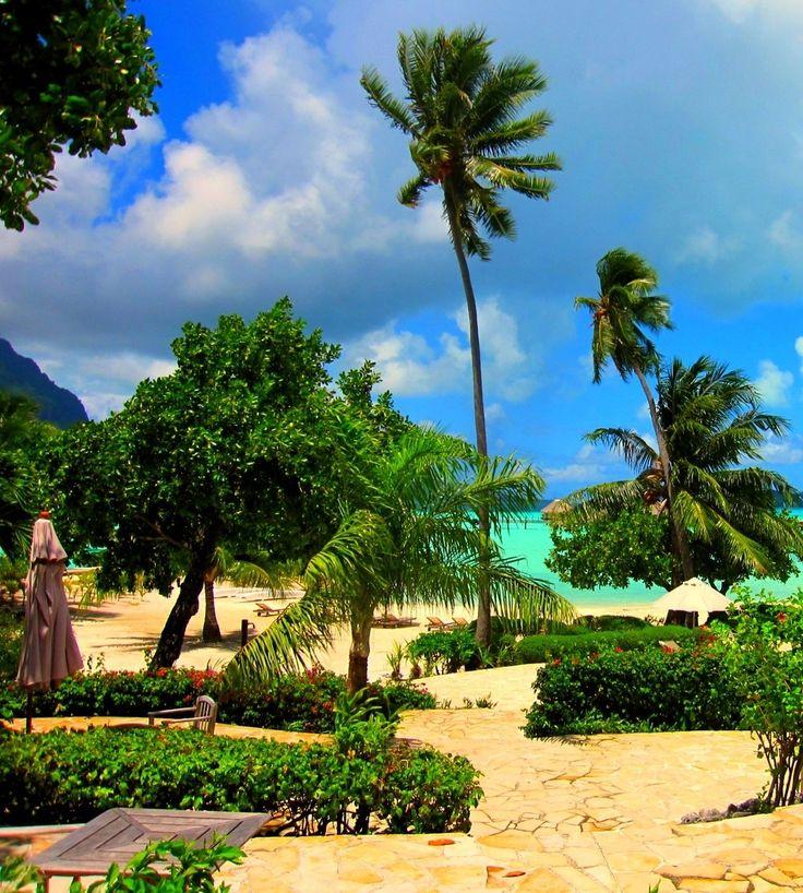 Bora Bora, French Polynesia | 16 Amazing Beaches You'll Want To Sip A Cocktail On via @BuzzFeed #vacation #beach #summer