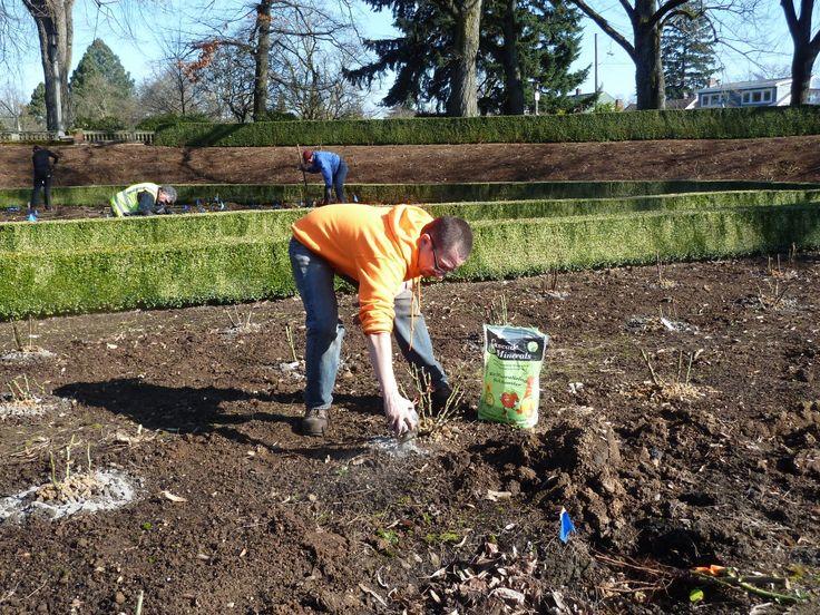 49 best gardening soil amendments images on pinterest Soil amendments for vegetable garden