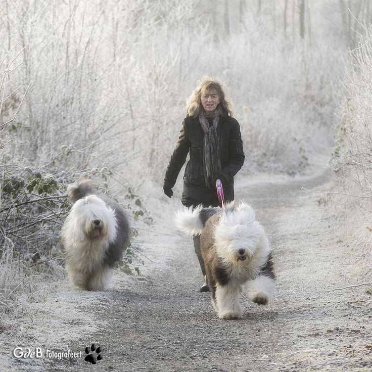 https://flic.kr/p/RbmG6a | winter wonderland