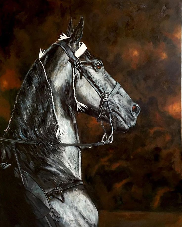 Honors, Tennessee walking horse stallion, World Grand Champion 2016. Oil on canvas, 30 by 40 inches, reference photo by Natasha Douglas. Original portrait available for purchase, inquire at beamdesigngroup@gmail.com. View other work at stacybeam.com. #oilpainting #oilportrait #horse #horseart #horseportrait #honors2016 #madeintennessee #tennesseewalker #tennesseewalkinghorse