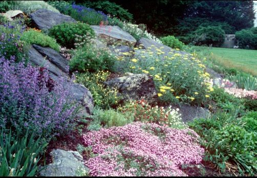 90 best images about ideas for driveway slope on pinterest for Sloped rock garden designs