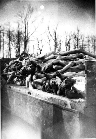 Buchenwald, Germany, April 1945, A pile of corpses.  Hard to believe this could happen in our history.