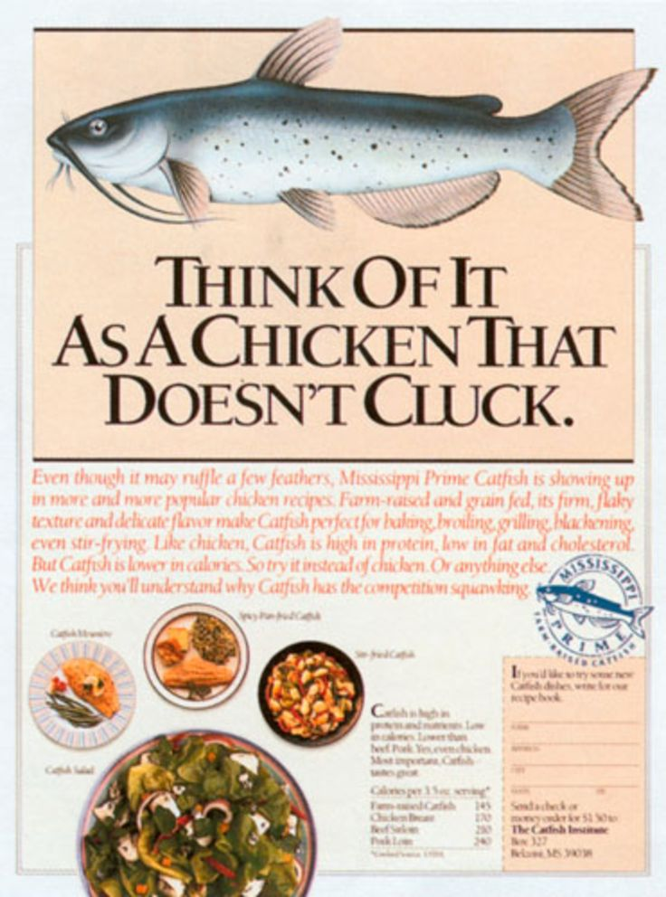 Read more: https://www.luerzersarchive.com/en/magazine/print-detail/the-catfish-institute-24775.html The Catfish Institute Tags: Tom Ryan,Gena Rogers,Mary Knight,Steve Pietzsch,The Catfish Institute,The Richards Group, Honolulu