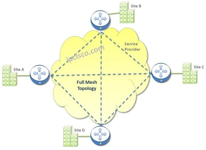 D3 Network Topology