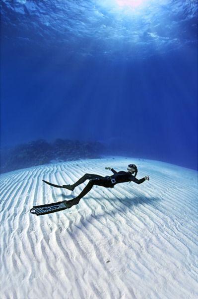 ~Sea Bed~