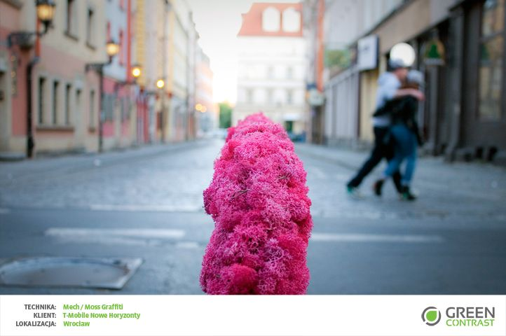 Moss instalations for Festiwal T-mobile Nowe Horyzonty
