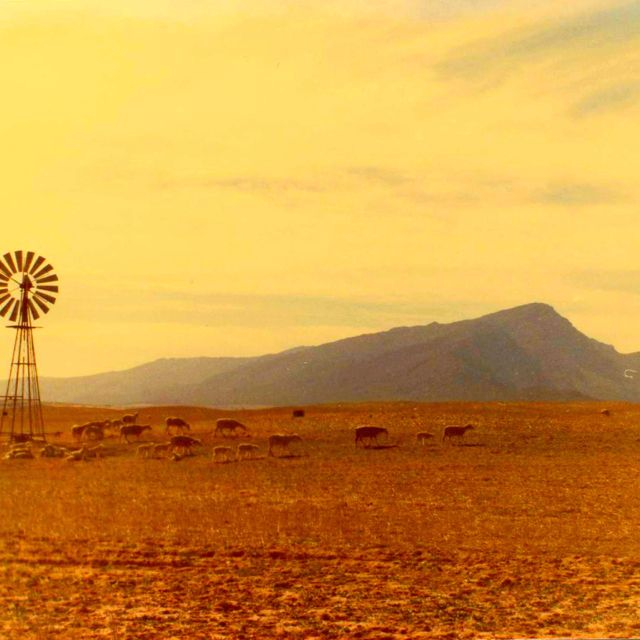 Beautiful Karoo, scene    South Africa is an amazing country - diverse landscapes & beautiful scenery.    Visit the Karoo    #ProudlySA #VisitSA #SouthAfrica #EasternCape #ILoveMyCountry #SATourism