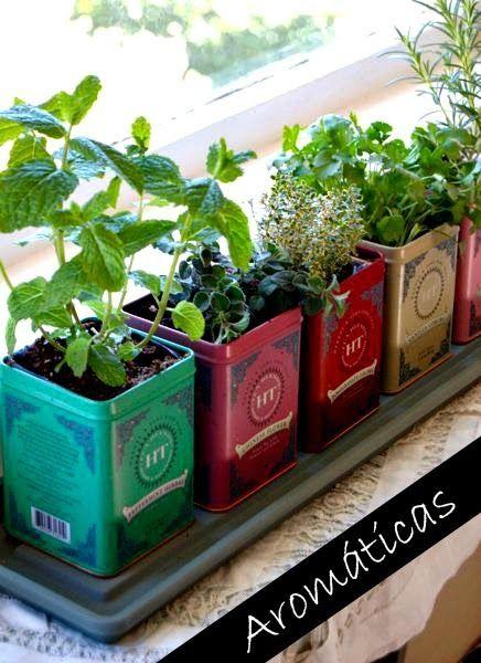 Decorar con plantas en latas   Decorar tu casa es facilisimo.com