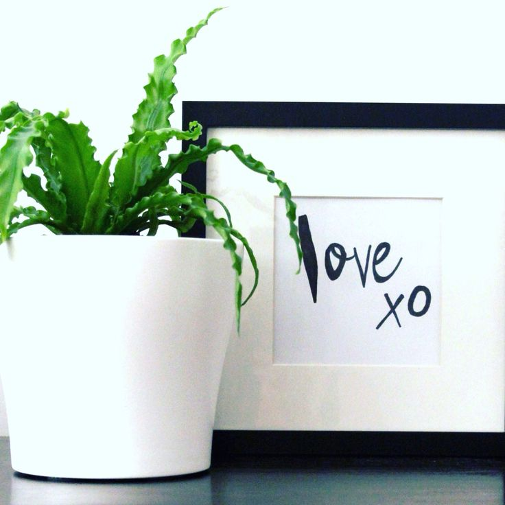 All you need is L O V E. Styled & Photographed by Annette of HHInteriors.