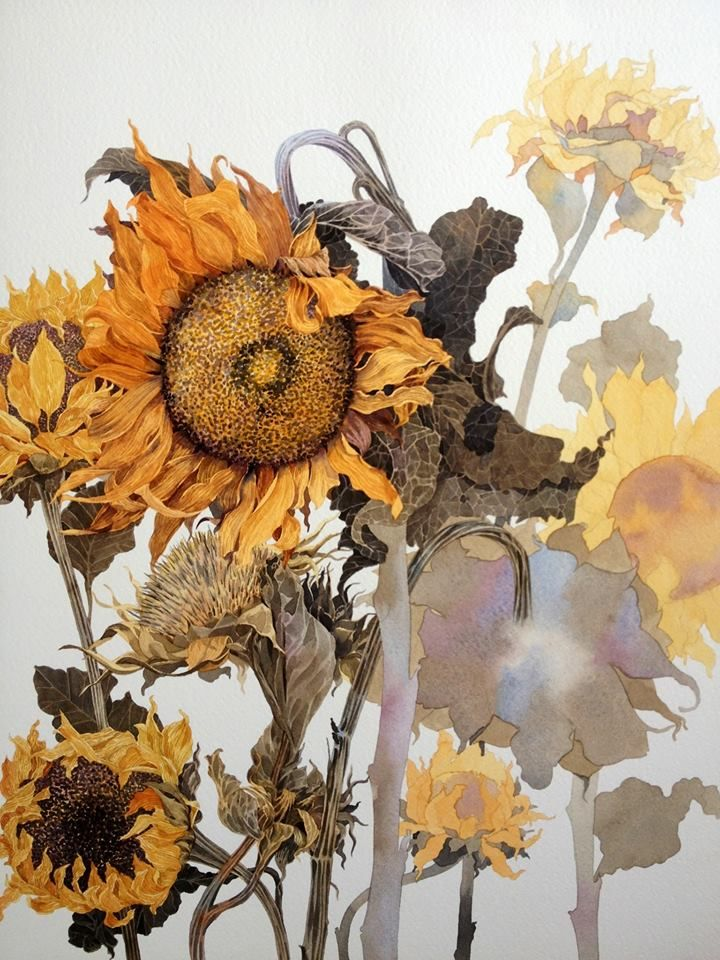 Sunflower watercolor by TI Watercolor on facebook ... #art #watercolor #sunflower