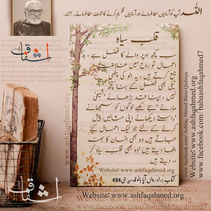 Bano qudsia quotes google search golden words in urdu for Bano qudsia poetry