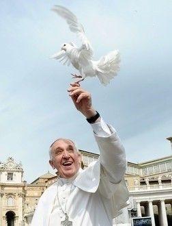 프란체스코 교황
