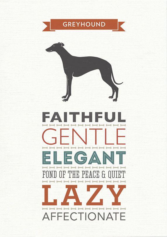 Greyhound Dog Breed Traits Print by WellBredDesign on Etsy