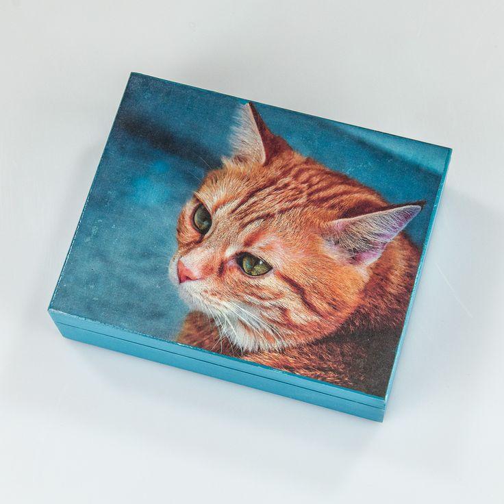 Pudełko – Błękitny kot – MagicPoland.eu
