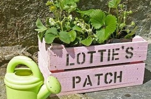 I want each of my children to have their own little patch to plant whatever they like