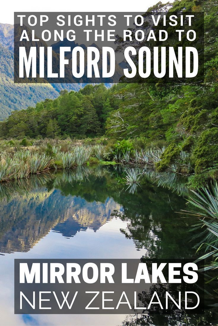 Queenstown to Milford Sound: The top sights to visit along the way to Magical Milford Sound include; Mirror Lakes, Knobs Flat, Te Anau Downs, The Chasm. Our guide to a milford sound day trip from Queenstown and the milford sound cruise from te anau. #newzealand