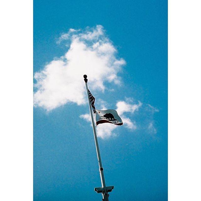 ・ ・  #leica #leicam3 #filmcamera #kodakportra #kodak_photo #kodak #filmphotography #35mm #フィルム #summicron50 #summicron #niigata  #japan #ライカ #ズミクロン #california #la #venice#gataforniacalifornia #gatafornia #oldtown #sandiego #sandiego #sandiegoconnection #sdlocals #sandiegolocals - posted by 小山太郎 https://www.instagram.com/tarokoyama_film. See more post on San Diego at http://sdconnection.com