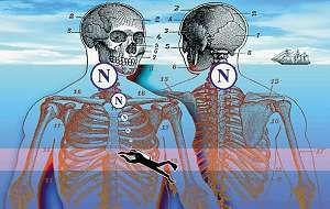 AIRLIFE te indica los padecimientos urgentes que se tratan con oxigenación hiperbárica destacan: pie diabético, intoxicación por monóxido de carbono, humo o cianuro y otros venenos tisulares;gangrena gaseosa, enfermedad descompresiva (por buceo),síndrome compartimentar y otras isquemias agudas traumáticas.También el herpes zóster, la oclusión de la arteria central de la retina y la neuritis óptica