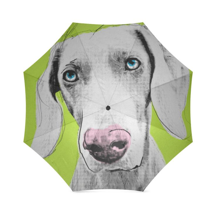 Weimaraner Dog Folding Umbrella. by bestofbloodybritish on Etsy