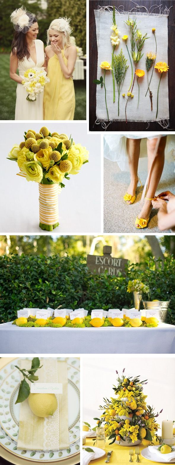 112 best citrus inspired wedding images on pinterest bridal be bold and try pairing lemon zest with any of the other colors in the spring 2013 color report you will find that lemon zest pairs well with almost all junglespirit Image collections
