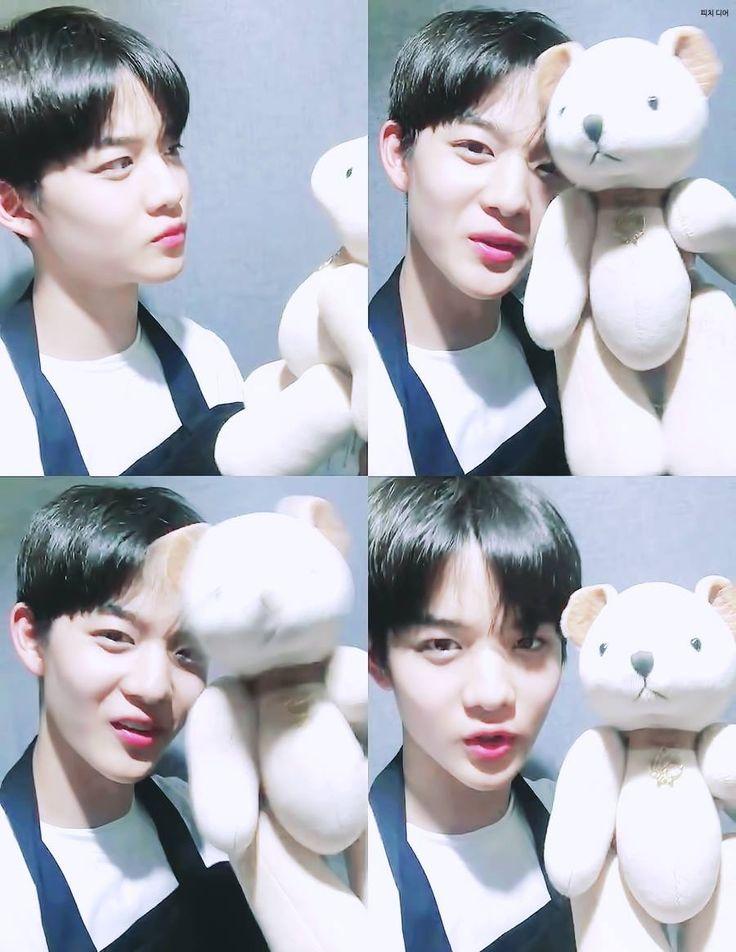 The teddy bear is so lucky ❤😂