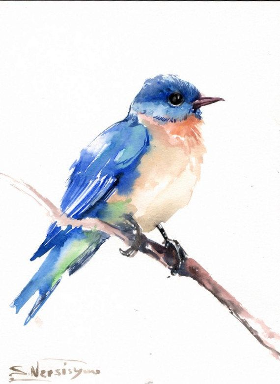 Bluebird aquarelle originale peinture 12 X 9 dans par ORIGINALONLY