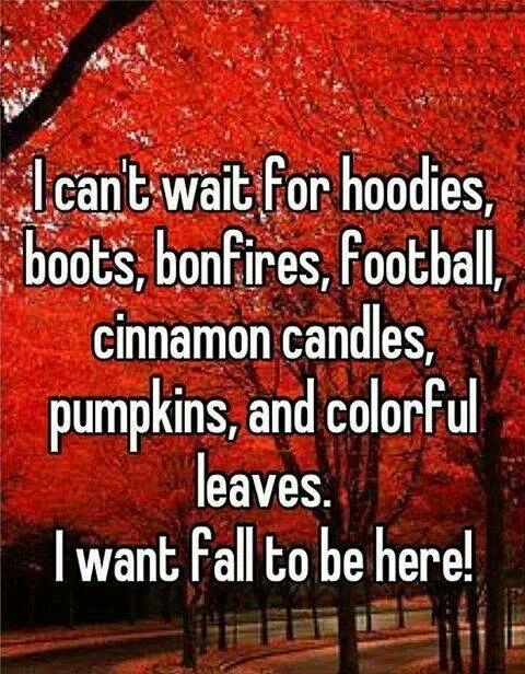 Fall turns into winter ❤
