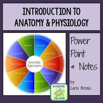 anatomy vs physiology venn diagram - Vatoz.atozdevelopment.co