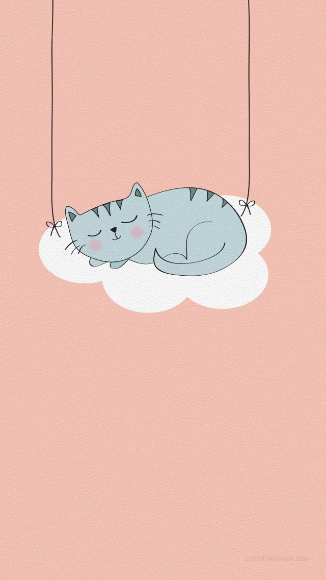 Peach Coral grey illustrated Cat iphone wallpaper background phone lock screen
