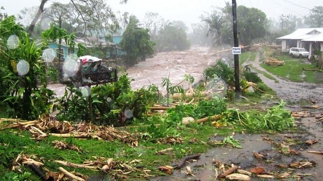 Cyclone Evan and the Samoa Victim Support Group | MLJ Adoptions | Samoa |