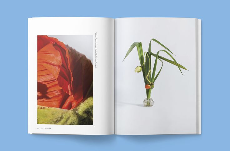 BLAD 5 – A magazine about house plants, green fingers and urban plant life