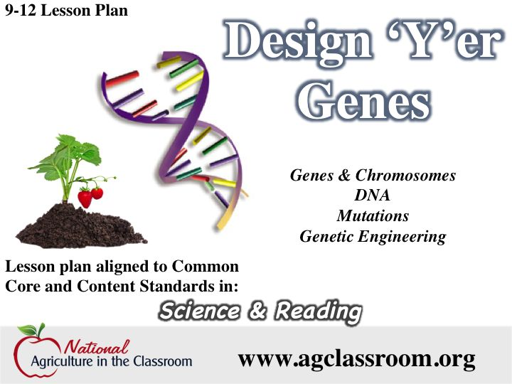 164 best biotechnology images on Pinterest School, Anatomy and - best of dna blueprint of life worksheet