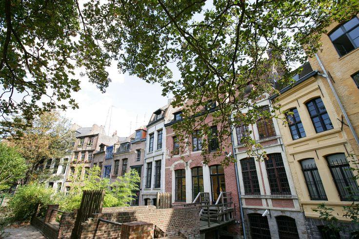 """""""Façades de maisons dans le Vieux Lille derrière la cathédrale Notre Dame de la Treille """""""