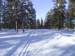 cross country skiing - Google-haku