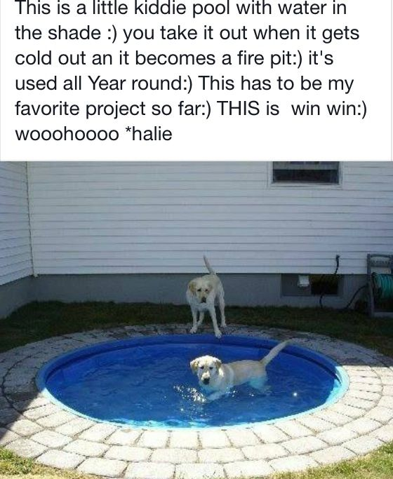 Kiddie pool fire pit for my dream house pinterest for Garden pool for dogs