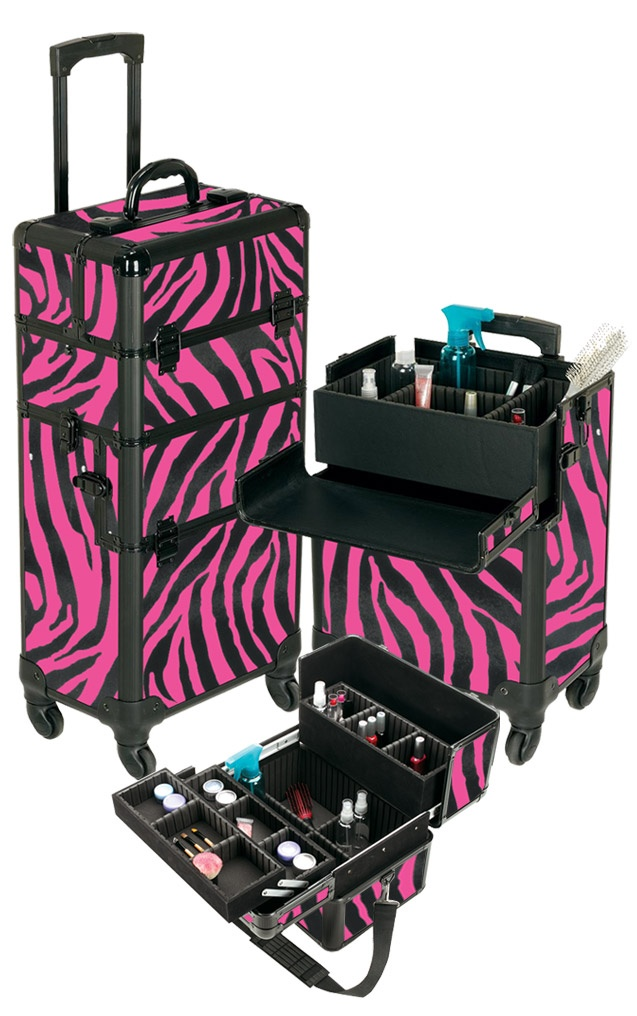 Pro Aluminum Makeup Case Pink Zebra 4 Wheeled Spinner Tools Pinterest If Only And Cases
