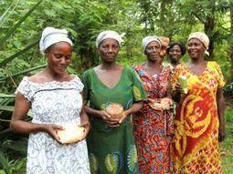 Ghana's women farmers resist the G7 plan to grab Africa's seeds https://t.co/C3rqqp49kO https://t.co/CZZR5TBYXf