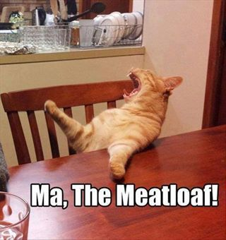 MA! The Meatloaf!!! Jordan does this to me! Lol