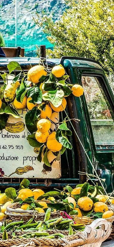 "The Amalfi coast, in southern Italy, is famous for its lemons, from which the ""Limoncello"" is made... 