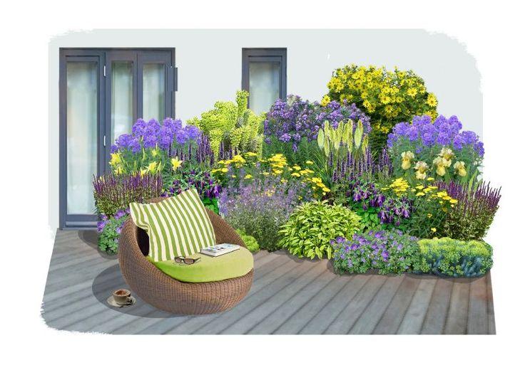 Ein Staudenbeet in trendigen Farben, das den Sommer und Ihren Garten zelebriert! Ausdrucksstarkes Lila und leuchtende gelb-grün Töne sorgen für einen anregenden Farbkontrast in dieser Rabatte, die von Frühsommer bis Spätherbst...