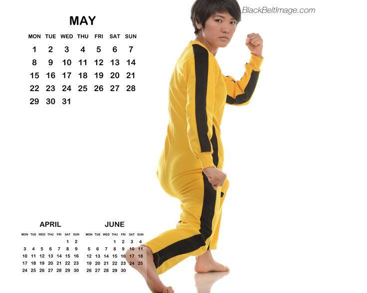 May 2017 Calendar (European)