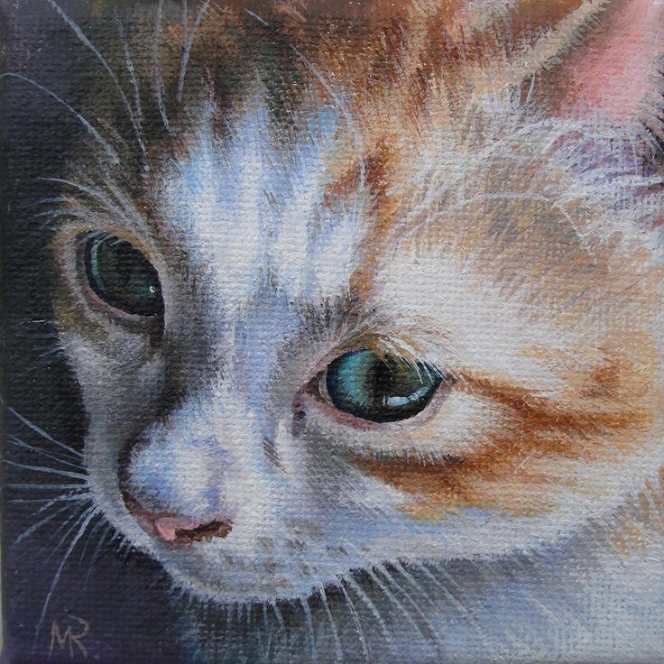 The Orange Kitten