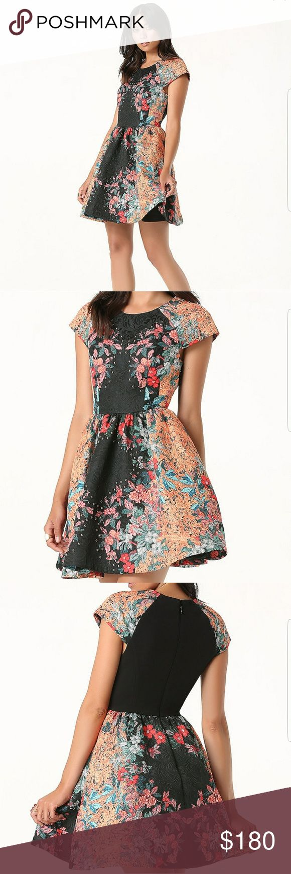 Bebe Print Fit & Flare Dress Magical fit-and-flare dress in sumptuous jacquard detailed by a richly hued placed print. Gathered skirt with full undernetting adds fabulous volume. Hidden back hook-and-eye and zip closure. Fully lined.  55% Polyester, 45% cotton  Worn only ones bebe Dresses Mini