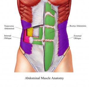 Abs best exercises. Learn what muscles you need to build to get the results you're after.