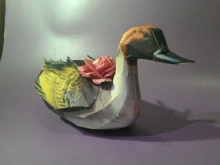 Duck paper box surabaya