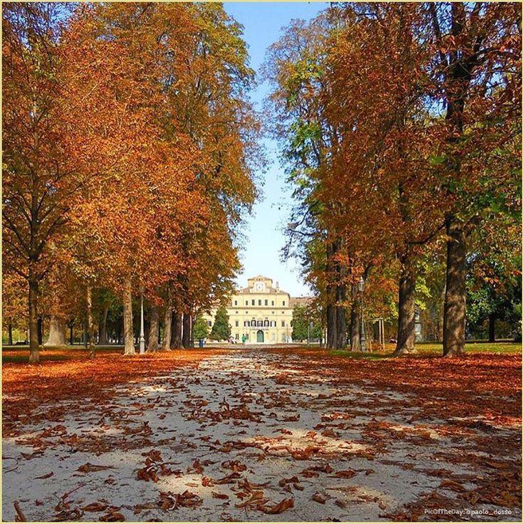 Foglie rosse d' #Autunno ... La #PicOfTheDay di oggi vi porta a correre attraverso i vivi colori autunnali del #ParcoDucale di #Parma  Complimenti e grazie a @paolo_dossi 🍂🍁 Red leaves in the #fall... Today's #PicOfTheDay runs through the #Autumn colors of Ducal Park in #Parma  Congrats and thanks to @paolo_dossi 🍂🍁
