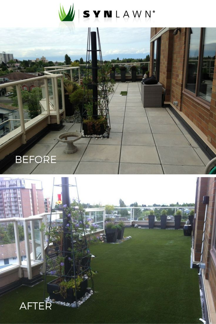 79 best synlawn before and after images on pinterest grasses